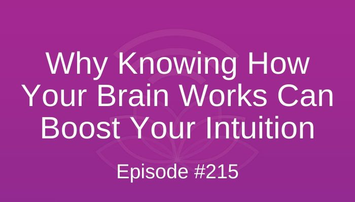 Why Knowing How Your Brain Works Can Boost Your Intuition - Episode #215
